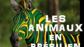 Apprendre Le Brésilien les animaux - OS ANIMAIS