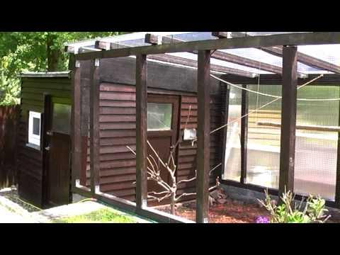 canary cage9 doovi. Black Bedroom Furniture Sets. Home Design Ideas
