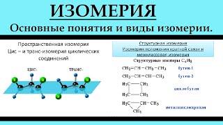 Органическая химия. Изомерия. ЕГЭ.