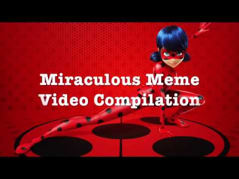 Miraculous Memes Video Compilation  (Season 1)