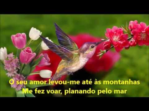 O Seu Amor (Rafaela Pinho) Playback Legendado (You Raise Me Up)