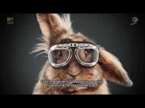 """""""Rabbit race"""", de Media Markt"""