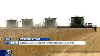 Почему казахстанские аграрии вынуждены покупать семена за рубежом?  | Время Сената