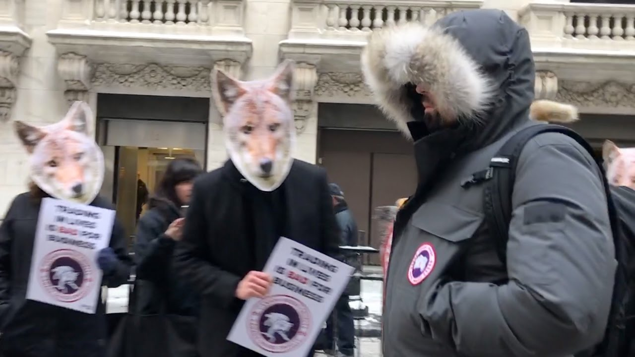 Canada Goose Protest at NY Stock Exchange