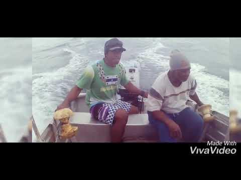 Download Pêche à la traîne.Tuamotu Reao.