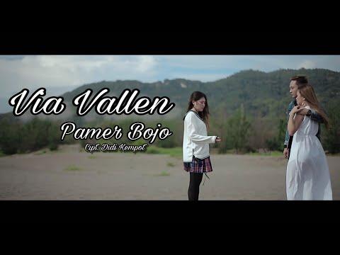 Via Vallen - Pamer Bojo