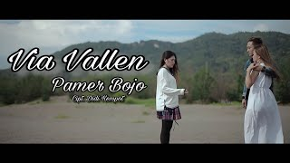 Gambar cover Via Vallen - Pamer Bojo ( Official )