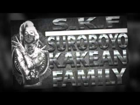 Tikus Berdasi - Alkohol -SKF-