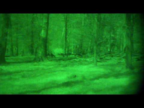 Night Lux NV Mono AX+ Wild 150  180 Meter drittel Mond kein IR Full HD
