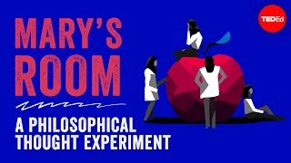 Mary's room: A philosophical thought experiment - Eleanor Nelsen