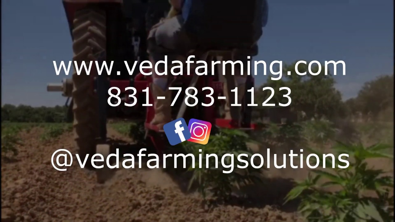 VED - Mechanical Weeder