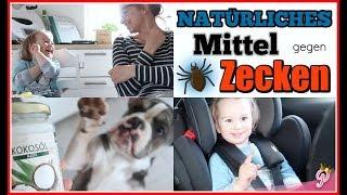 MITTEL gegen Zecken   KONSEQUENT sein😞 Kleinkind schnallt sich an   FamilyVlog #205   1princepessa3