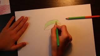 Учимся рисовать гриб сыроежка.