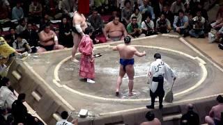 Sumo wrestling Takamisakari
