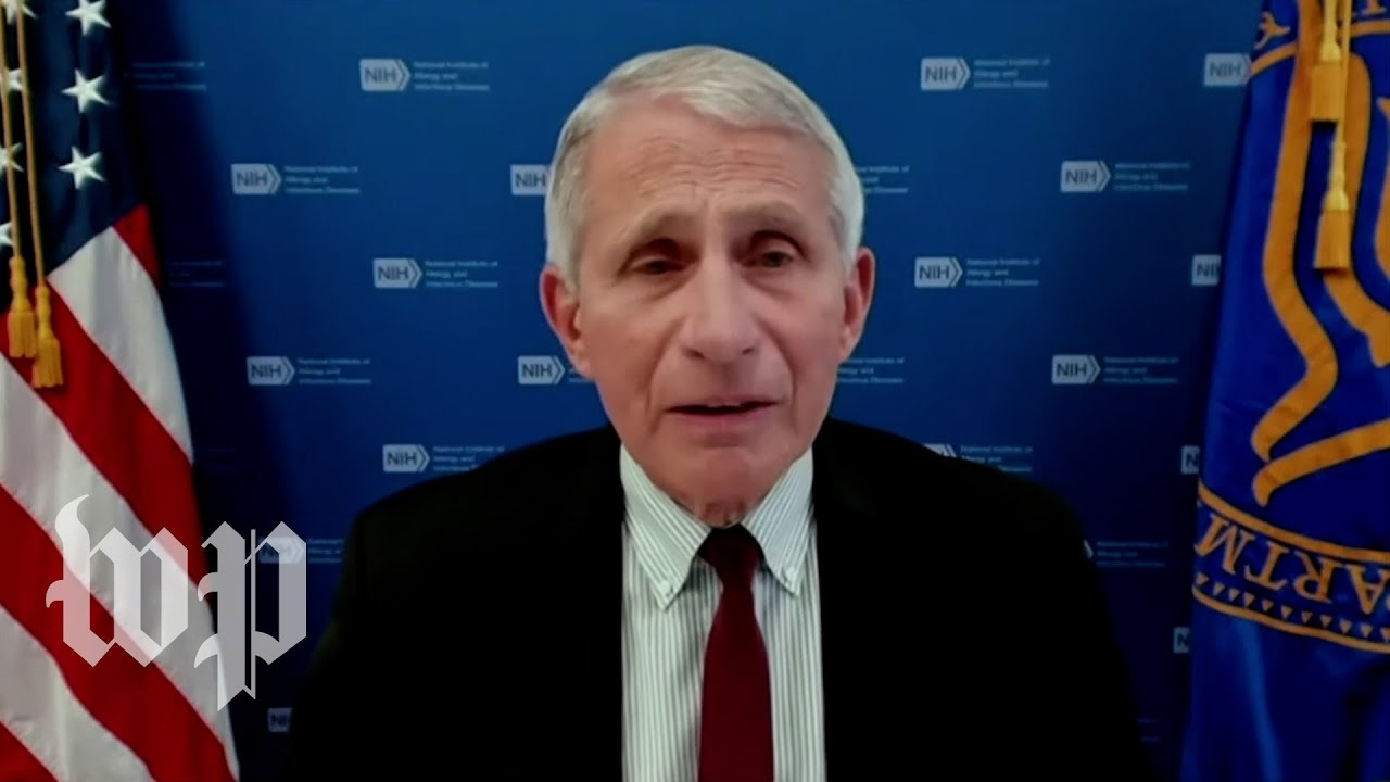 Download Fauci says delta variant is 'greatest threat' to eliminating coronavirus in U.S.