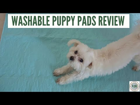 Testing Washable Puppy Pads | Plastic Free-ish Challenge #1