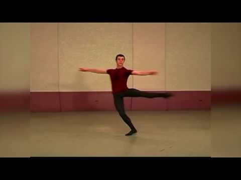 The Male Ballet Dancer