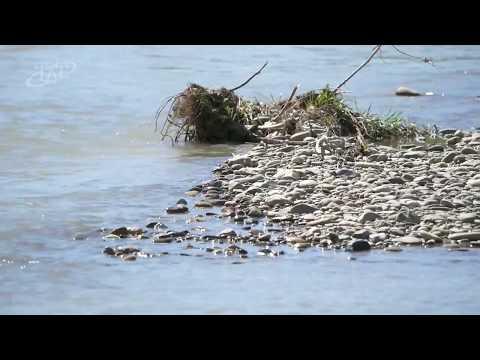 Безопасность на водных объектах в Невинномысске