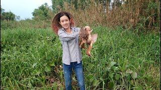 Bẫy lủi - xem cách bẫy cò của em gái cực kỳ hiệu quả/ beautiful girl catch stork