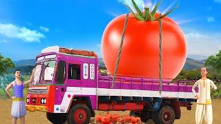 ராட்சத தக்காளி - Giant Tomato …