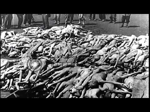 Piled up corpses of Nazi concentration camp victims in Mauthausen, Austria. HD Stock Footage