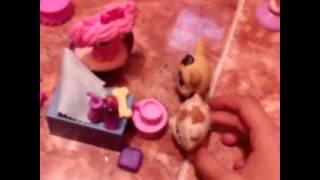 Littles pet shop: La niña mal educada.