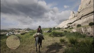 Red Dead Redemption 2a ward