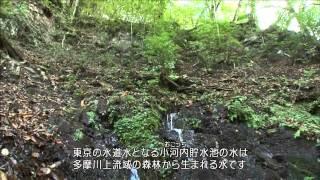 森づくりの喜び 多摩川水源森林隊