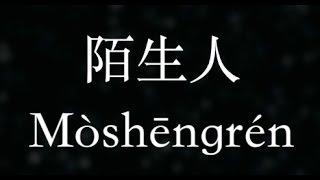 蔡健雅【陌生人】Stranger  (KTV with Pinyin)