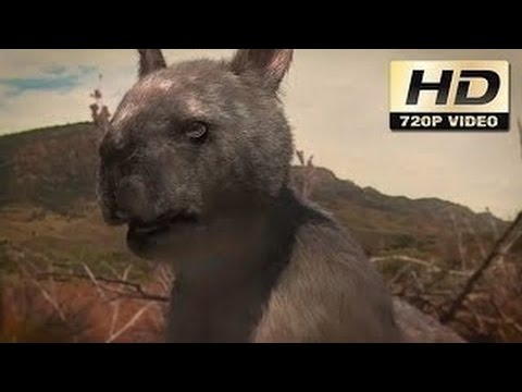 Australia's Prehistoric Strange Creatures | Discovering the Past | Documentary Film HD