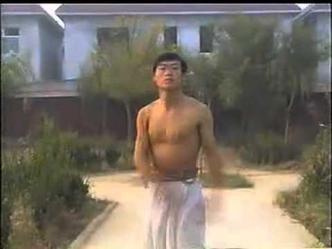 心意六合拳Xinyi Liuhe Quan by Liu Fengming