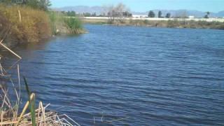 Places LA - Sepulveda Basin Wildlife Reserve