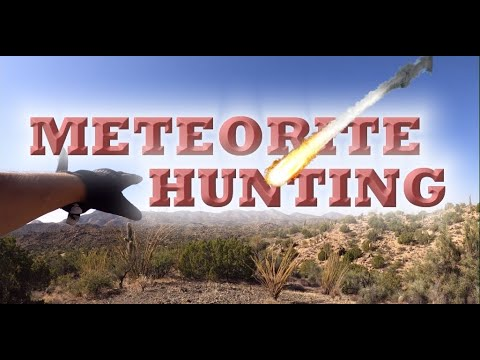 METEORITE HUNTING Nothing AZ BIG SPIDER And Tortoise.