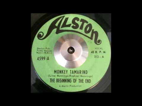 The Beginning Of The End - Monkey Tamarind