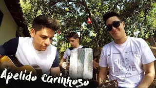 Baixar Apelido Carinhoso - Gusttavo Lima (cover Tulio e Gabriel)
