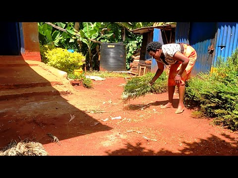 Morning Cleaning Routine in African Home