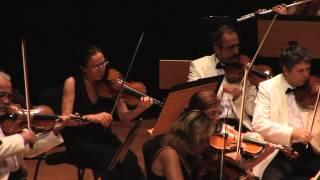 Izmir Chamber Orchestra - October 2012