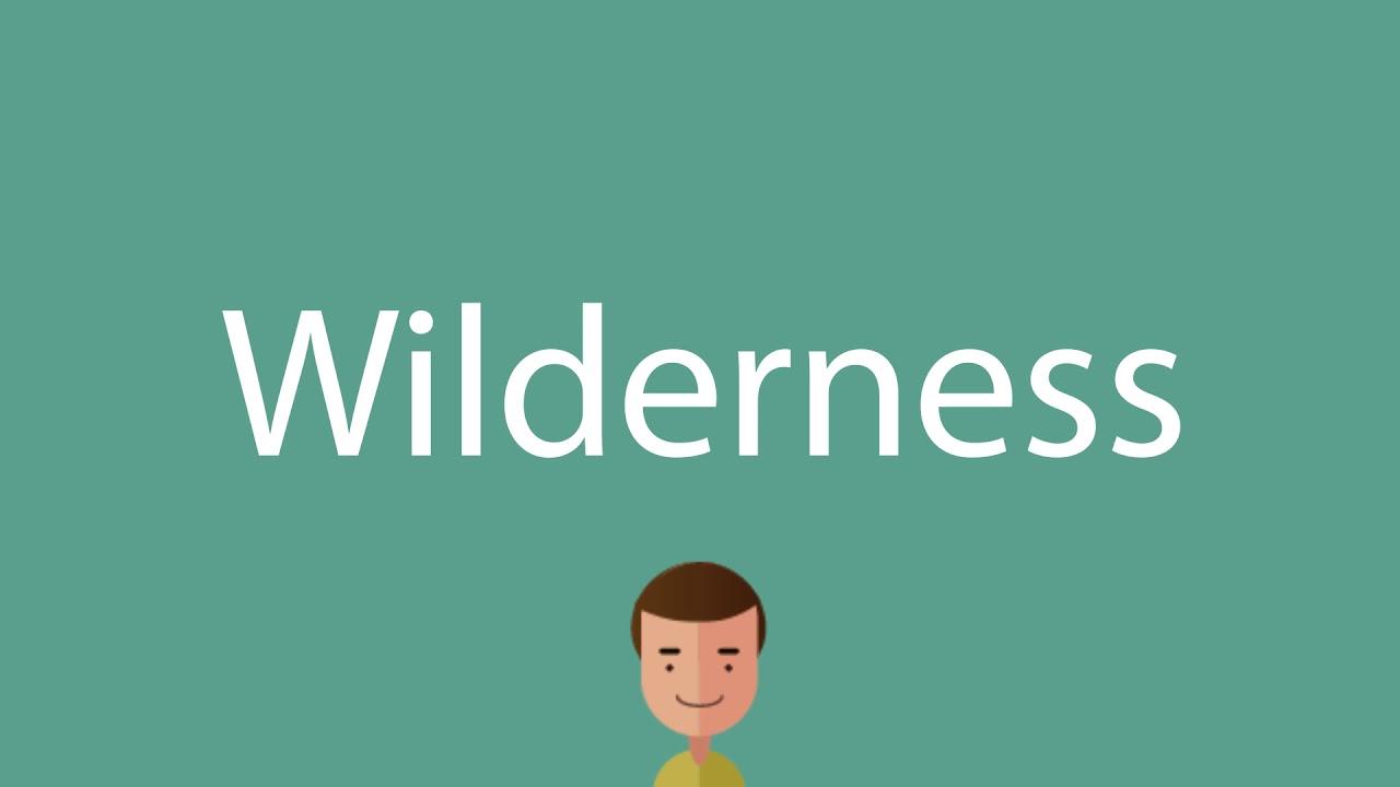 Wilderness pronunciation