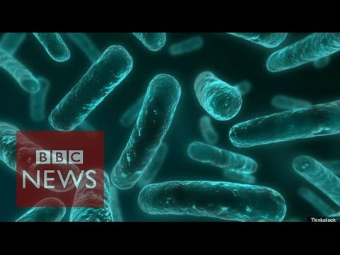 Antibiotic resistance: World on cusp of 'post-antibiotic era' - BBC News