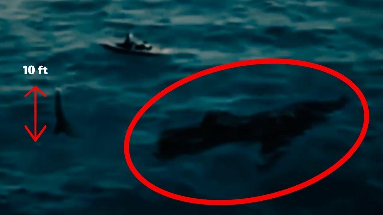 7 supuestas apariciones de megalodones captados en video