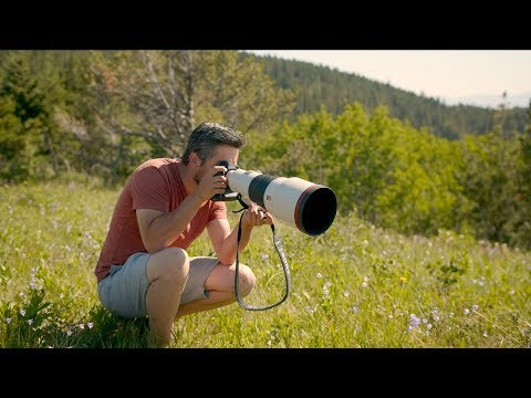 Sony 400mm F28 G Master handson