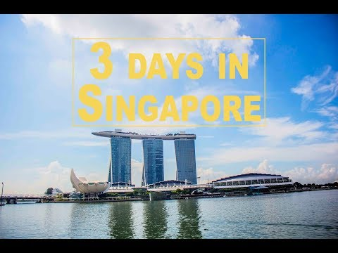 🇸🇬 3 Days in Singapore | 💵$300 Dollar Budget Trip? | 📱Shot o