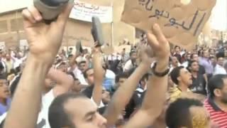 طعون في نتائج الانتخابات المصرية