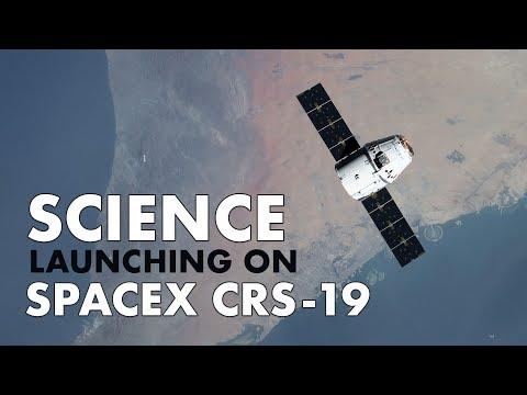 Science Launching On SpaceX CRS 19