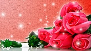 Розы футаж фон для поздравлений footage hd