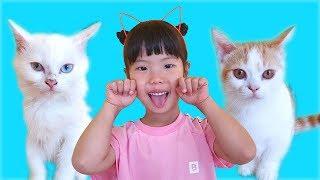 유니 미니의 고양이 돌보기! 놀아주기! 먹이주기! Helping three little kittens song 인기 동요 Nursery Rhymes for kids - Romiyu