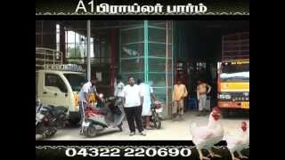A1 Broiler Pudukkottai , Best Broiler Shop ,Wholesale and Retail Prices for Chicken in Pudukkottai