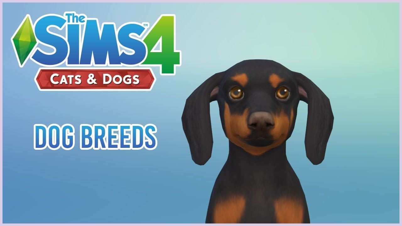 The Sims 4 Cats Dogs Create A Pet Overview 1 Dog
