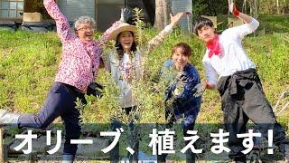 【鈴木杏】オリーブ、植えます!【立石ケン】