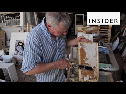 Why an Australian Chef Started Beekeeping
